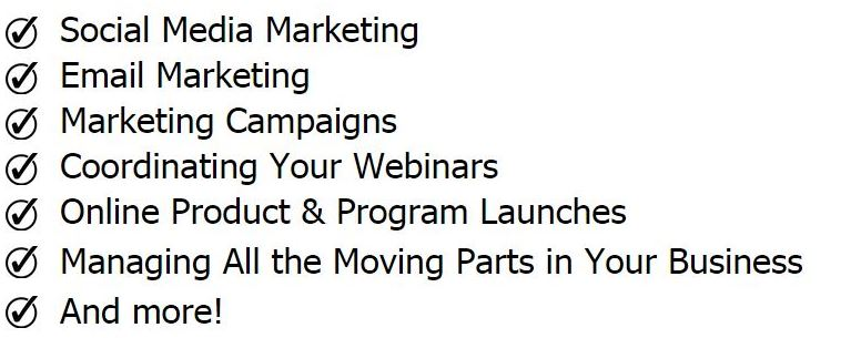 help-with-marketing-campaign